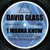 David Glass - I Wanna Know (Original Mix)