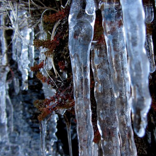 Iced cliff face melting, Sauðárkrókur, Iceland