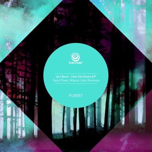 Javi Bora - Feel It Coming (David Glass Remix) - Pura Music