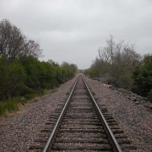 3 A.M. Gerbil Express