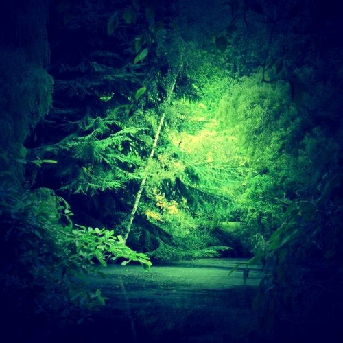 Return To Ecclesbourne Valley ft James Oldrini