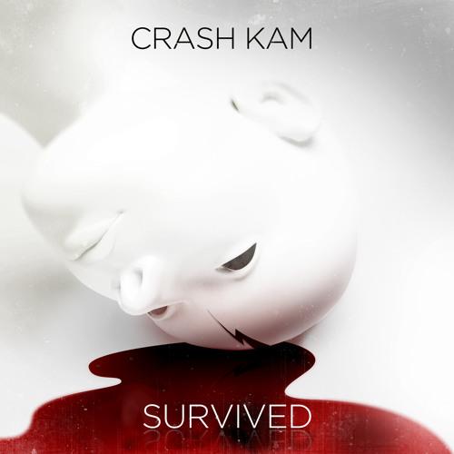 Crash Kam :: Survived