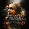 Adele - Set Fire To The Rain (dubstep mix)