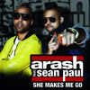 Arash Feat. Sean Paul-She Makes Me Go (Trance on my mind) DJ Osheem Remix