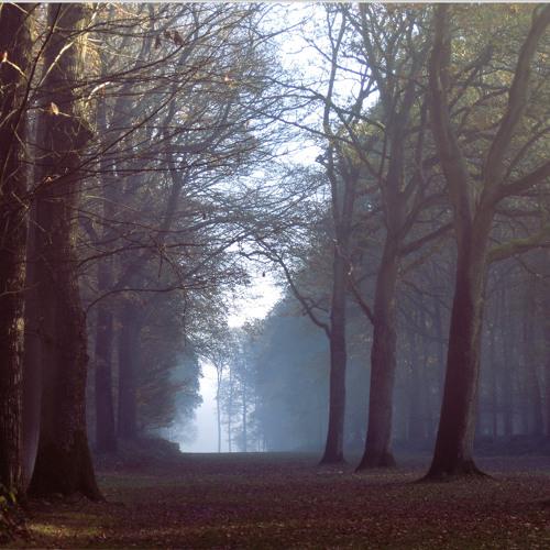 Way North by Julien Boulier (02 04 2009) Album Resolution 2009