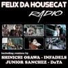 Felix Da Housecat - Radio (DATA remix)