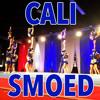 California Allstars Smoed 2013 Music