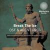 DSF&Agent Greg-Break The Ice(Original Mix)