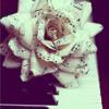 Lara Fabian - Trouver la Vie l Amour le Sens
