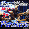 Cheer Athletics Panthers 2012-2013