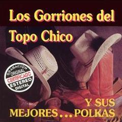 Polkotas Norteñas Mix- Los Gorriones Del Topo Chico