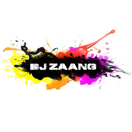 Loose Cannon (Dj Zaang Original Mix)