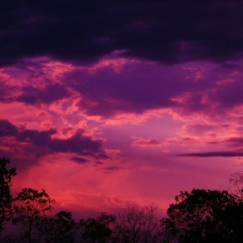 Lee moody - violet sky