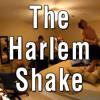 Harlem Shake!!!