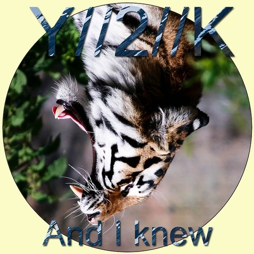 And I Knew by Y2K