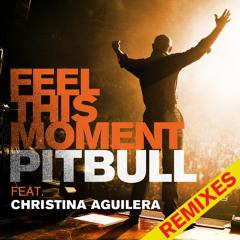 Feel This Moment (DJ Riddler RMX) (Extended Mix)