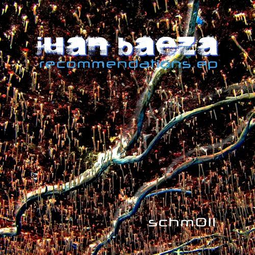 juan baeza - recommended authorization (dadive rmx)