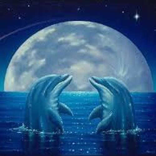 dolphin-worship