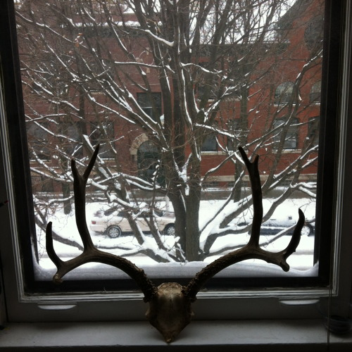 Winter/Window (for six voices SSSAAA and electronics)