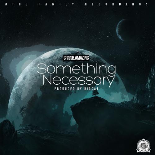 CrissB.amazing - Something Necessary (Prod. By BigCat)