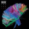 Muse - Madness ( Vocals )