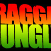 Ragga Jungle - Rasta Urban