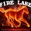 Roll Me Away - By Fire Lake - Tribute To Bob Seger