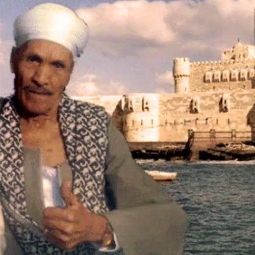 Abou Elwafa Elshohagy