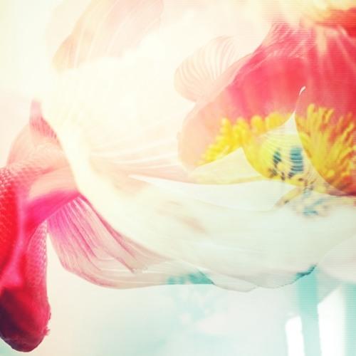 Le moulin - Yann Tiersen