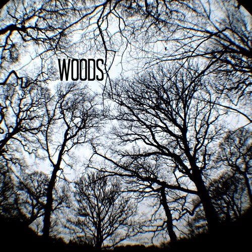 WOODs - My Lady River (un-mastered)