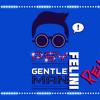 PSY - GENTLEMAN (DJ FELINI REMIX)