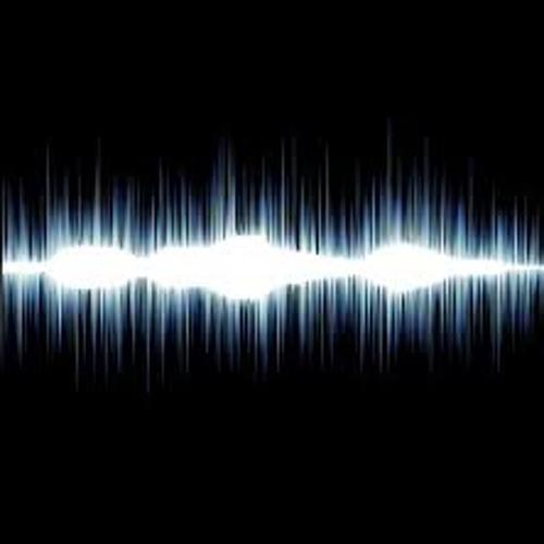 LuSundra Everett's Sound Syndication Group