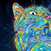 Cheshire Kat