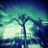 (F)uture (S)ounds (O)f (W)ellington (FSOW01 Promo Mix)