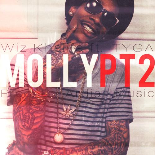 Wiz Khalifa ft. TYGA - Molly Pt.2( instrumental, prod. by Ardian Music )