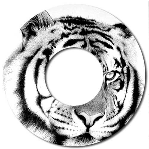The Way Of The Tiger (Grooveroger Deep Player Mashup)