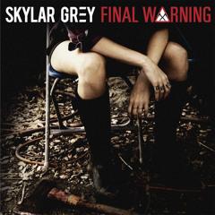 Skylar Grey - Final Warning