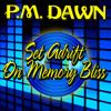 PM Dawn - Set Adrift On Memory Bliss  [Film, TV & Ads]