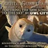 Owl city - To the sky (Ost. Legend of the Guardians) (Cover)