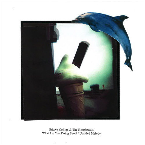 A. What Are You Doing, Fool?: Edwyn Collins & The Heartbreaks
