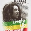 Lively Up Yourself- Bob marley