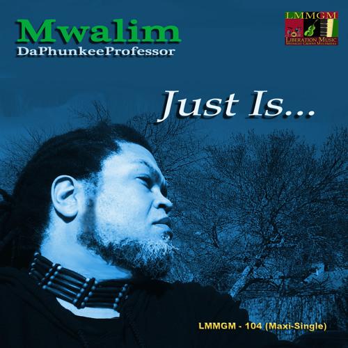 Just Is... (Radio Edit) - Mwalim DaPhunkeeProfessor