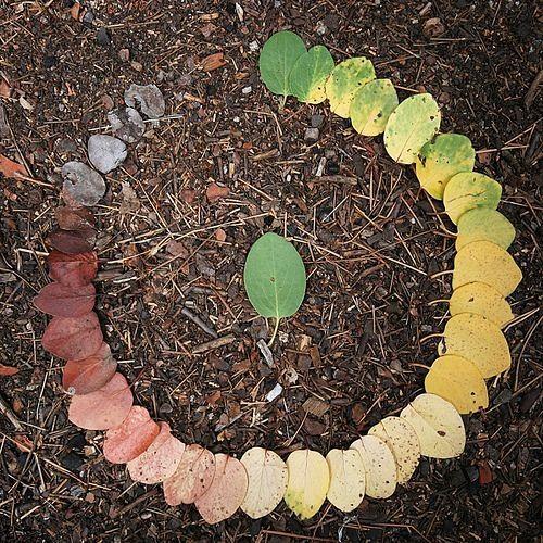 Sweeping Leaves (Bloodroot Kids Re-imagining)