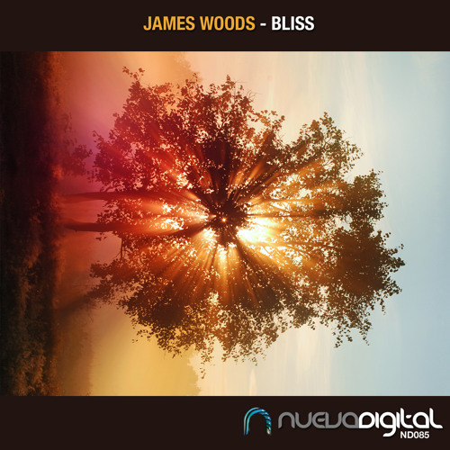[ND085] James Woods - Bliss (Original Mix) As Played on ToneDiary 262!