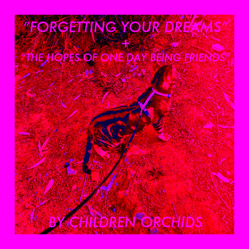 Forgetting Your Dreams