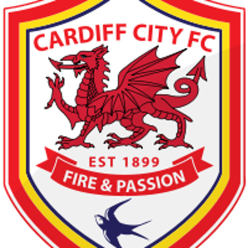 Swedish House Mafia (Cardiff City Premier League Mix)