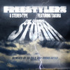 Freestylers and Stereo:Type featuring Takura - The Coming Storm (Sound Avtar Remix)
