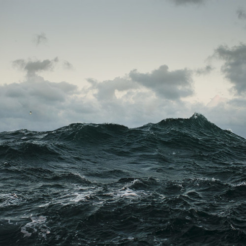 Maff Stenning - The North Sea Intimate, i.e., dead