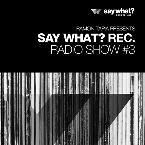 Say What? Podcast 003 with Ramon Tapia