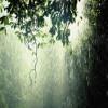 Hujan Sore Sore